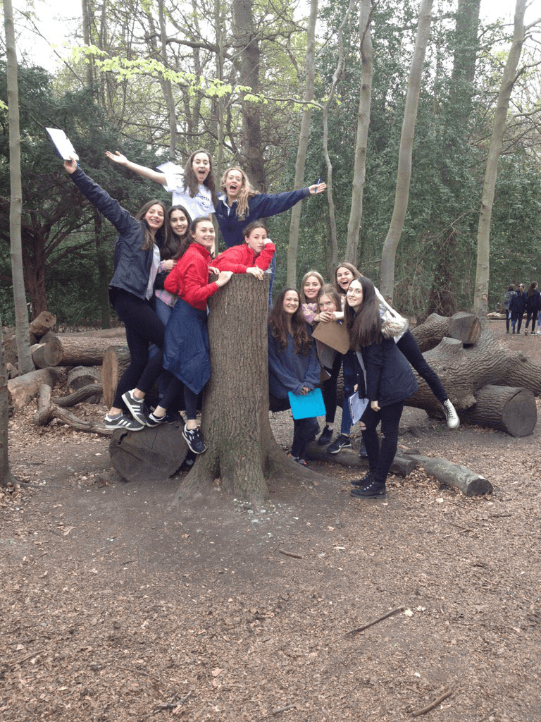 box hill coursework